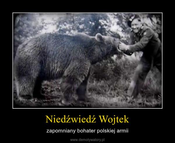 Niedźwiedź Wojtek – zapomniany bohater polskiej armii