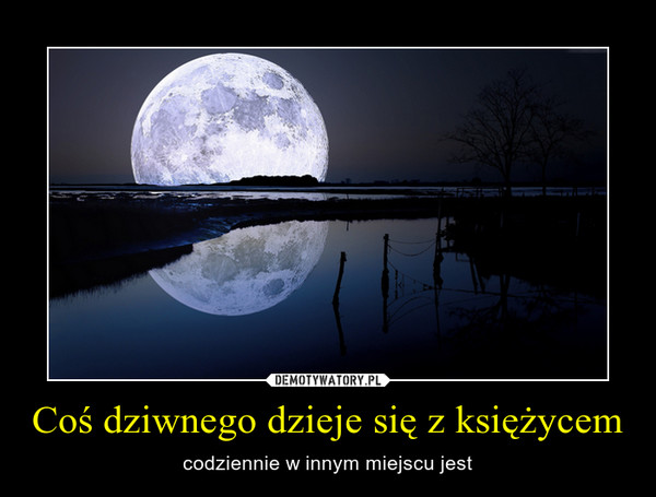 Coś dziwnego dzieje się z księżycem – codziennie w innym miejscu jest