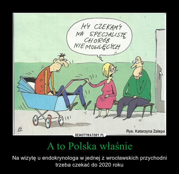 A to Polska właśnie – Na wizytę u endokrynologa w jednej z wrocławskich przychodni trzeba czekać do 2020 roku