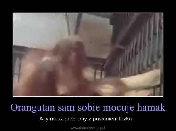 Orangutan sam sobie mocuje hamak – A ty masz problemy z posłaniem łóżka...