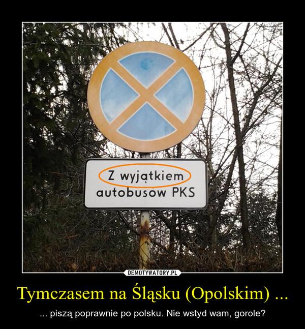 Tymczasem na Śląsku (Opolskim) ... – ... piszą poprawnie po polsku. Nie wstyd wam, gorole?