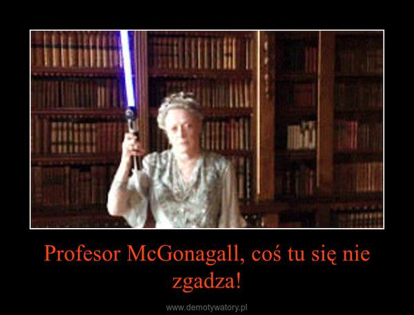 Profesor McGonagall, coś tu się nie zgadza! –