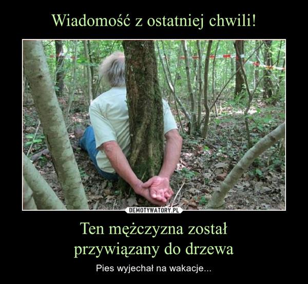 Ten mężczyzna zostałprzywiązany do drzewa – Pies wyjechał na wakacje...
