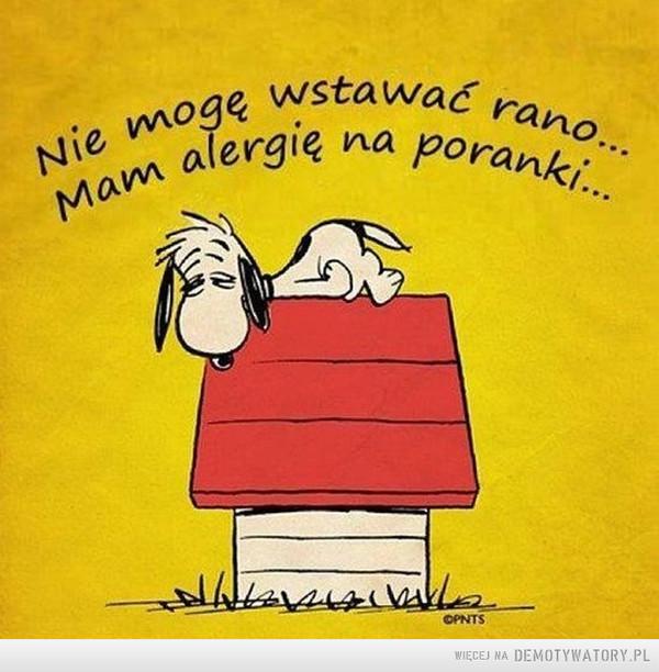 Kto z was ma jeszcze taką alergię? –