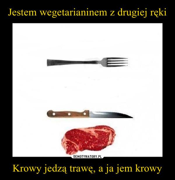 Krowy jedzą trawę, a ja jem krowy –