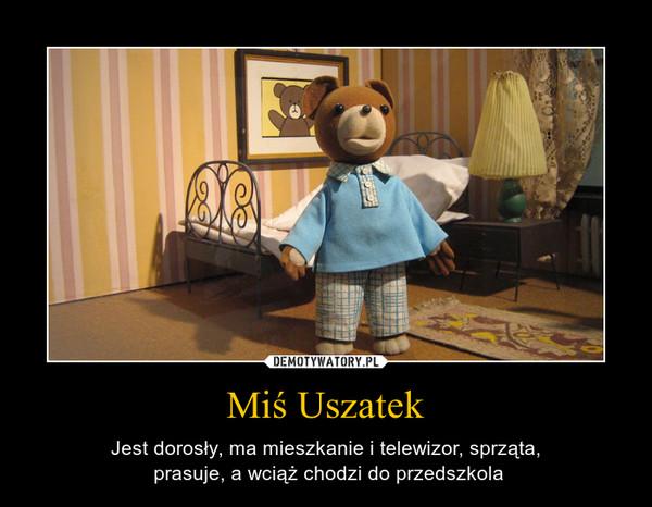 Miś Uszatek – Jest dorosły, ma mieszkanie i telewizor, sprząta, prasuje, a wciąż chodzi do przedszkola
