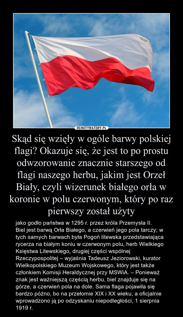 Skąd się wzięły w ogóle barwy polskiej flagi? Okazuje się, że jest to po prostu odwzorowanie znacznie starszego od flagi naszego herbu, jakim jest Orzeł Biały, czyli wizerunek białego orła w koronie w polu czerwonym, który po raz pierwszy został użyty – jako godło państwa w 1295 r. przez króla Przemysła II.Biel jest barwą Orła Białego, a czerwień jego pola tarczy; w tych samych barwach była Pogoń litewska przedstawiająca rycerza na białym koniu w czerwonym polu, herb Wielkiego Księstwa Litewskiego, drugiej części wspólnej Rzeczypospolitej – wyjaśnia Tadeusz Jeziorowski, kurator Wielkopolskiego Muzeum Wojskowego, który jest także członkiem Komisji Heraldycznej przy MSWiA. – Ponieważ znak jest ważniejszą częścią herbu, biel znajduje się na górze, a czerwień pola na dole. Sama flaga pojawiła się bardzo późno, bo na przełomie XIX i XX wieku, a oficjalnie wprowadzono ją po odzyskaniu niepodległości, 1 sierpnia 1919 r.