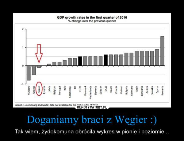 Doganiamy braci z Węgier :) – Tak wiem, żydokomuna obróciła wykres w pionie i poziomie...
