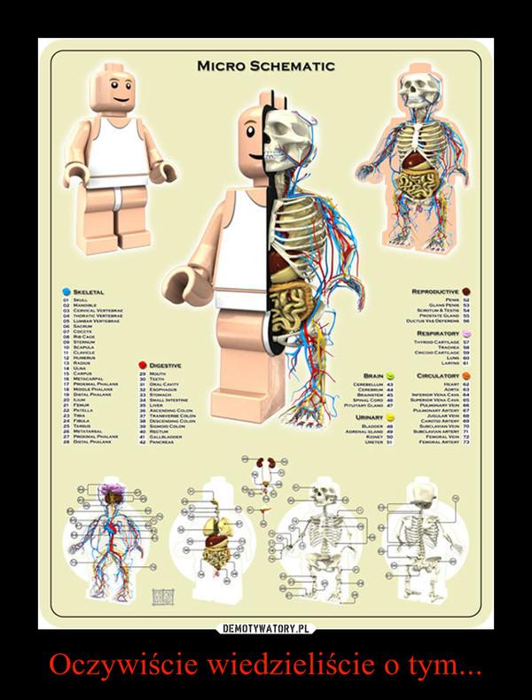 Oczywiście wiedzieliście o tym... –  micro schematic lego