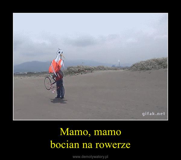 Mamo, mamobocian na rowerze –