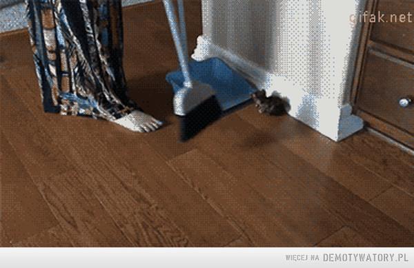 Takie sprzątanie –