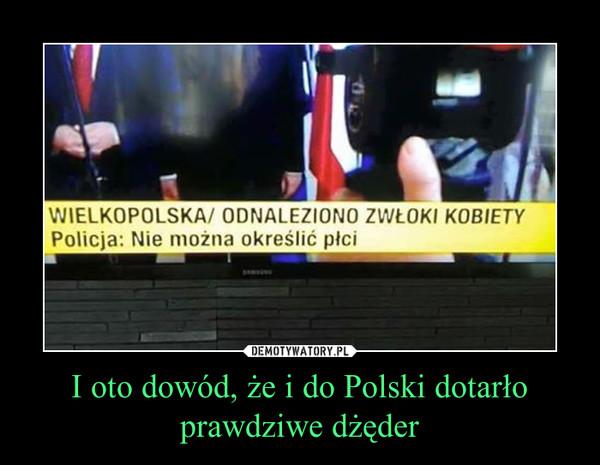 I oto dowód, że i do Polski dotarło prawdziwe dżęder –