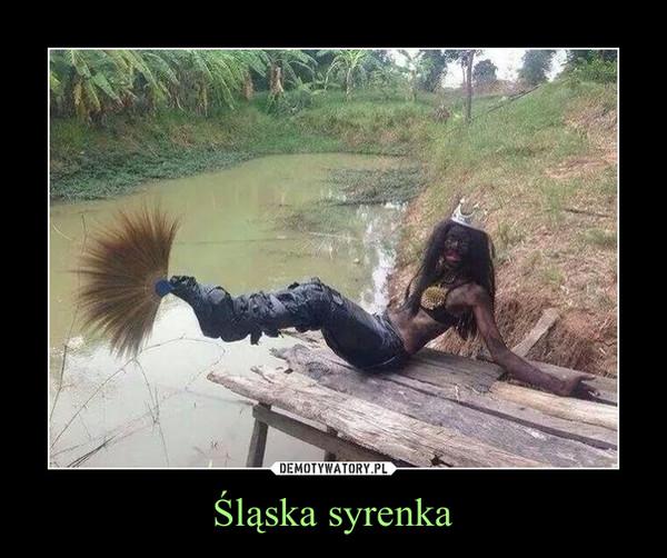 Śląska syrenka –