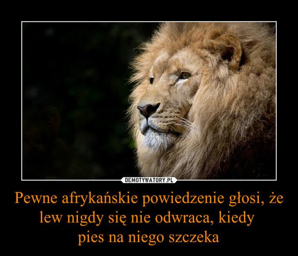 Pewne afrykańskie powiedzenie głosi, że lew nigdy się nie odwraca, kiedy pies na niego szczeka –