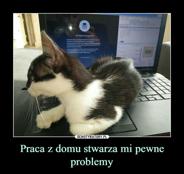 Praca z domu stwarza mi pewne problemy –
