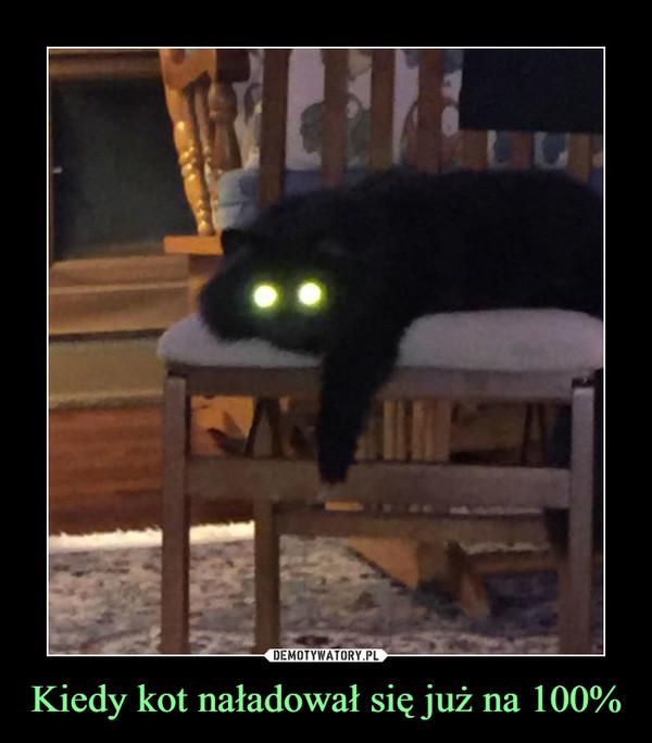 Kiedy kot naładował się już na 100% –