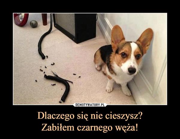 Dlaczego się nie cieszysz?Zabiłem czarnego węża! –