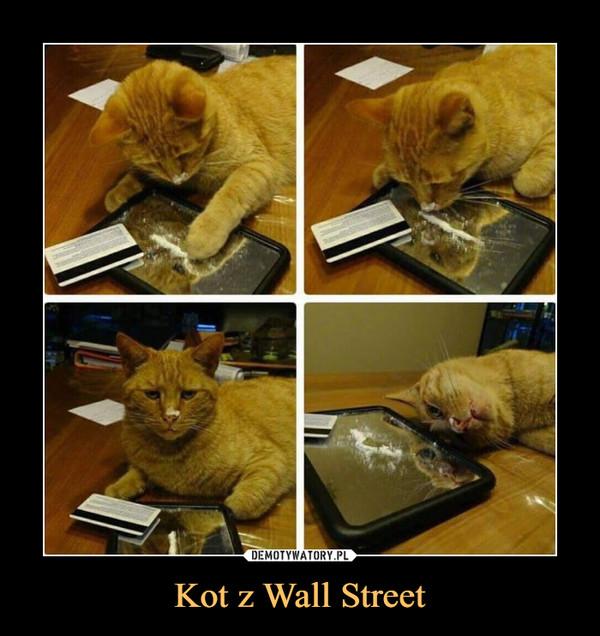 Kot z Wall Street –