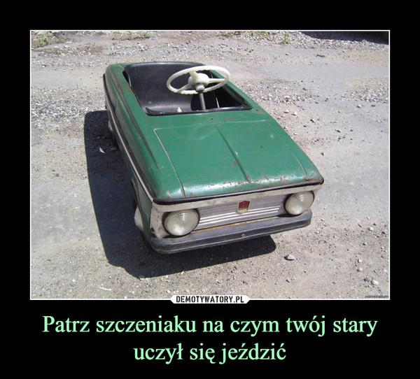 Patrz szczeniaku na czym twój stary uczył się jeździć –