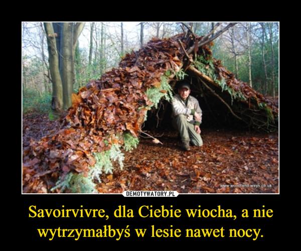 Savoirvivre, dla Ciebie wiocha, a nie wytrzymałbyś w lesie nawet nocy. –
