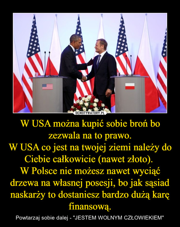 """W USA można kupić sobie broń bo zezwala na to prawo.W USA co jest na twojej ziemi należy do Ciebie całkowicie (nawet złoto). W Polsce nie możesz nawet wyciąć drzewa na własnej posesji, bo jak sąsiad naskarży to dostaniesz bardzo dużą karę finansową. – Powtarzaj sobie dalej - """"JESTEM WOLNYM CZŁOWIEKIEM"""""""
