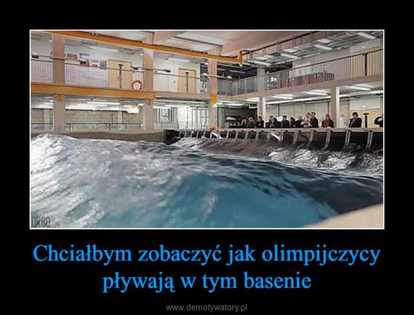 Chciałbym zobaczyć jak olimpijczycy pływają w tym basenie –