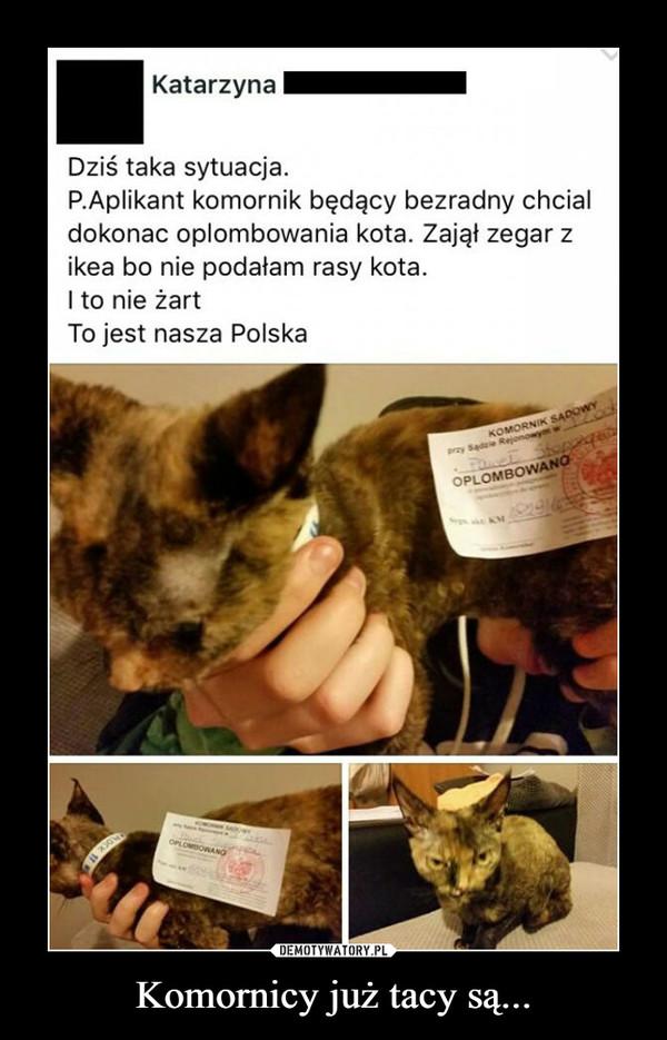 Komornicy już tacy są... –  Dziś taka sytuacja.P.Aplikant komornik będący bezradny chciałdokonać oplombowania kota. Zajął zegar zikea bo nie podałam rasy kota.I to nie żartTo jest nasza Polska