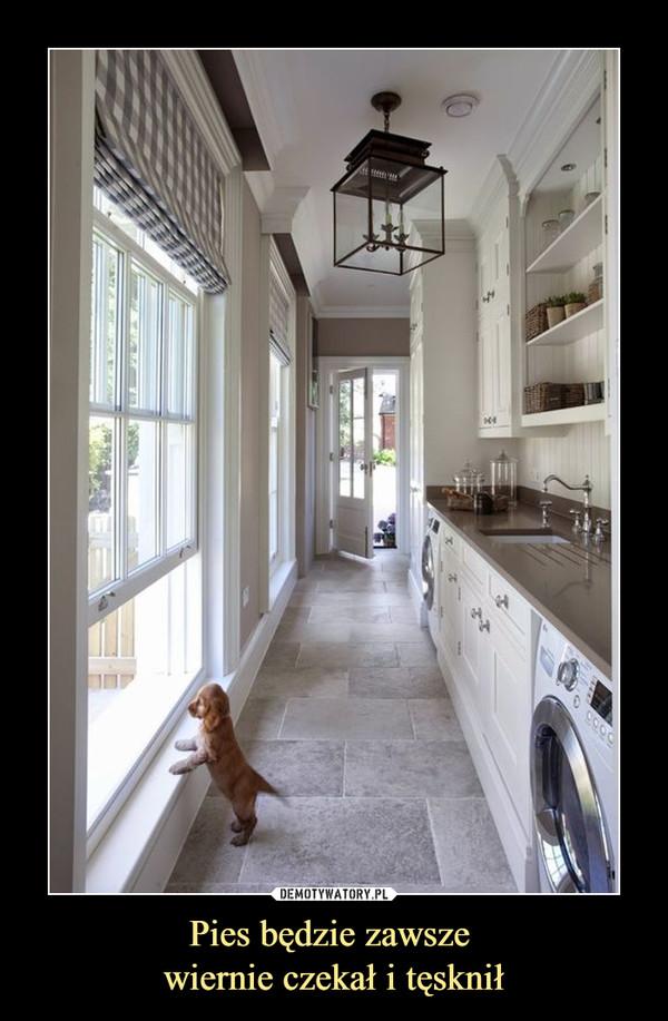 Pies będzie zawsze wiernie czekał i tęsknił –