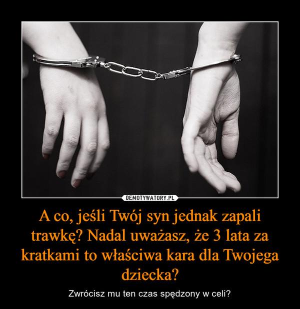 A co, jeśli Twój syn jednak zapali trawkę? Nadal uważasz, że 3 lata za kratkami to właściwa kara dla Twojega dziecka? – Zwrócisz mu ten czas spędzony w celi?