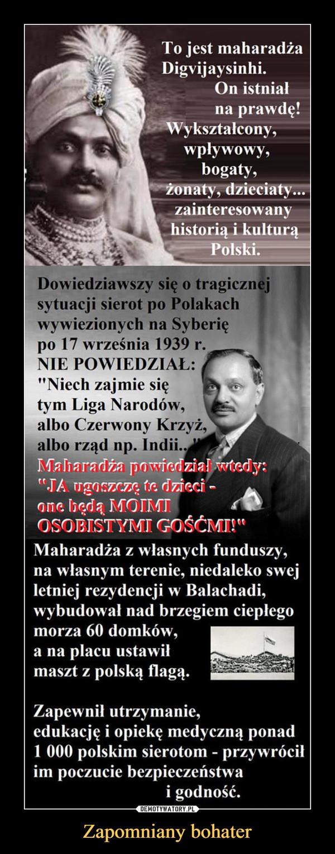 """Zapomniany bohater –  To jest maharadża Digvijaysinhi. On istniał na prawdę! Wykształcony, wpływowy, bogaty, żonaty, dzieciaty... zainteresowany historią i kulturą Polski. Dowiedziawszy się o tragicznej sytuacji sierot po Polakach wywiezionych na Syberię po 17 września 1939 r. NIE POWIEDZIAŁ: """"Niech zajmie się tym Liga Narodów, albo Czerwony Krzyż, albo rząd np. Indii.  Maharadża z własnych funduszy, na własnym terenie, niedaleko swej letniej rezydencji w Balachadi, wybudował nad brzegiem ciepłego morza 60 domków, a na placu ustawił masz z polską flagą.Zapewnił utrzymanie, edukację i opiekę medyczną ponad 1 000 polskim sierotom - przywrócił im poczucie bezpieczeństwa i godność."""