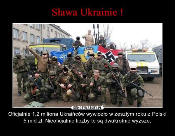 – Oficjalnie 1,2 miliona Ukraińców wywiozło w zeszłym roku z Polski 5 mld zł. Nieoficjalnie liczby te są dwukrotnie wyższe.