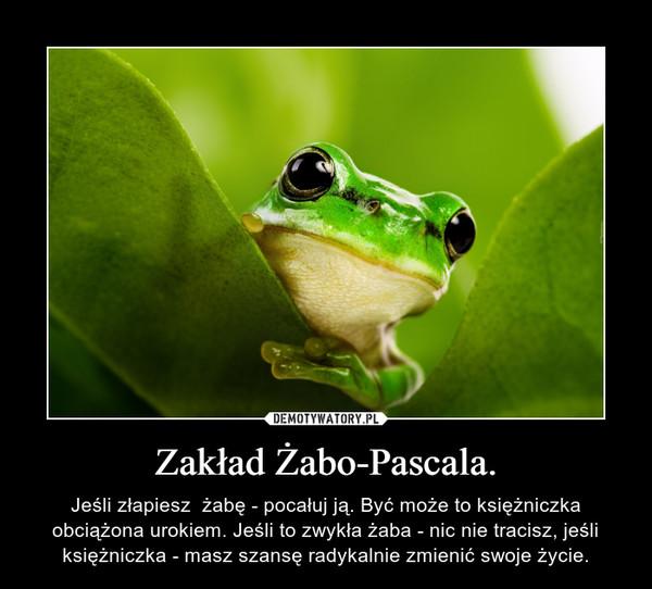 Zakład Żabo-Pascala. – Jeśli złapiesz  żabę - pocałuj ją. Być może to księżniczka obciążona urokiem. Jeśli to zwykła żaba - nic nie tracisz, jeśli księżniczka - masz szansę radykalnie zmienić swoje życie.