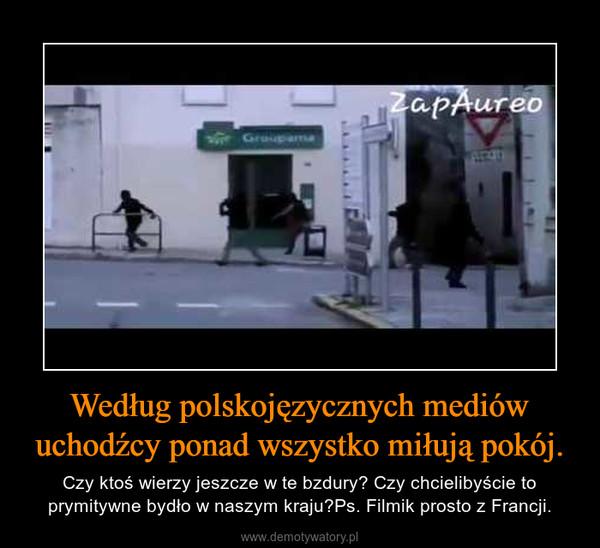 Według polskojęzycznych mediów uchodźcy ponad wszystko miłują pokój. – Czy ktoś wierzy jeszcze w te bzdury? Czy chcielibyście to prymitywne bydło w naszym kraju?Ps. Filmik prosto z Francji.