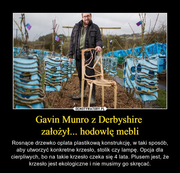 Gavin Munro z Derbyshire założył... hodowlę mebli – Rosnące drzewko oplata plastikową konstrukcję, w taki sposób, aby utworzyć konkretne krzesło, stolik czy lampę. Opcja dla cierpliwych, bo na takie krzesło czeka się 4 lata. Plusem jest, że krzesło jest ekologiczne i nie musimy go skręcać.