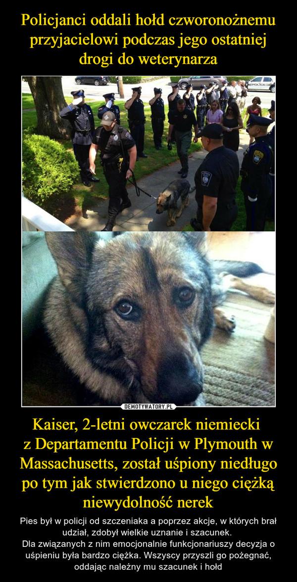 Kaiser, 2-letni owczarek niemiecki z Departamentu Policji w Plymouth w Massachusetts, został uśpiony niedługo po tym jak stwierdzono u niego ciężką niewydolność nerek – Pies był w policji od szczeniaka a poprzez akcje, w których brał udział, zdobył wielkie uznanie i szacunek. Dla związanych z nim emocjonalnie funkcjonariuszy decyzja o uśpieniu była bardzo ciężka. Wszyscy przyszli go pożegnać, oddając należny mu szacunek i hołd