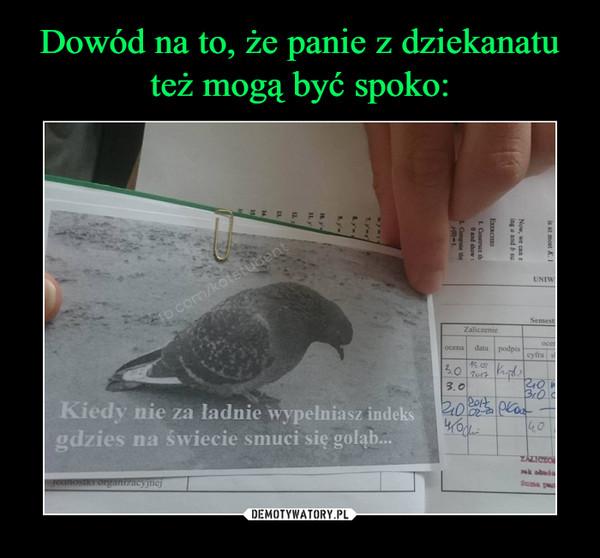 –  Kiedy nie za ładnie wypełniasz indeks, gdzieś na świecie smuci się gołąb.