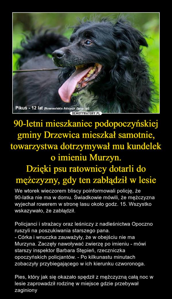 90-letni mieszkaniec podopoczyńskiej gminy Drzewica mieszkał samotnie, towarzystwa dotrzymywał mu kundelek o imieniu Murzyn.Dzięki psu ratownicy dotarli do mężczyzny, gdy ten zabłądził w lesie – We wtorek wieczorem bliscy poinformowali policję, że 90-latka nie ma w domu. Świadkowie mówili, że mężczyzna wyjechał rowerem w stronę lasu około godz. 15. Wszystko wskazywało, że zabłądził. Policjanci i strażacy oraz leśniczy z nadleśnictwa Opoczno ruszyli na poszukiwania starszego pana.- Córka i wnuczka zauważyły, że w obejściu nie ma Murzyna. Zaczęły nawoływać zwierzę po imieniu - mówi starszy inspektor Barbara Stępień, rzeczniczka opoczyńskich policjantów. - Po kilkunastu minutach zobaczyły przybiegającego w ich kierunku czworonoga.Pies, który jak się okazało spędził z mężczyzną całą noc w lesie zaprowadził rodzinę w miejsce gdzie przebywał zaginiony