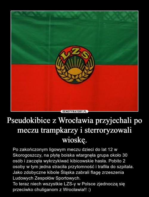 Pseudokibice z Wrocławia przyjechali po meczu trampkarzy i sterroryzowali wioskę.