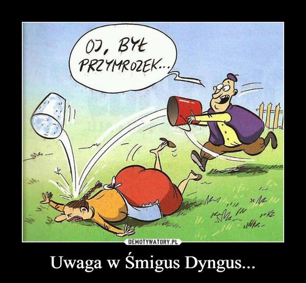 Uwaga w Śmigus Dyngus... –