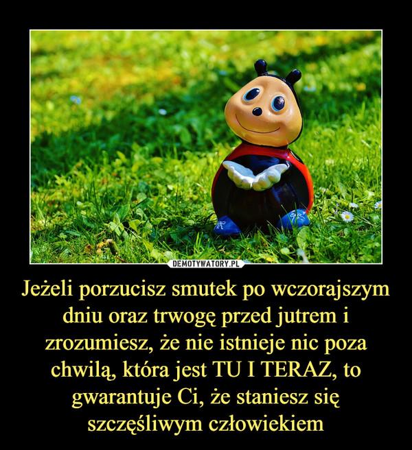Jeżeli porzucisz smutek po wczorajszym dniu oraz trwogę przed jutrem i zrozumiesz, że nie istnieje nic poza chwilą, która jest TU I TERAZ, to gwarantuje Ci, że staniesz się szczęśliwym człowiekiem –