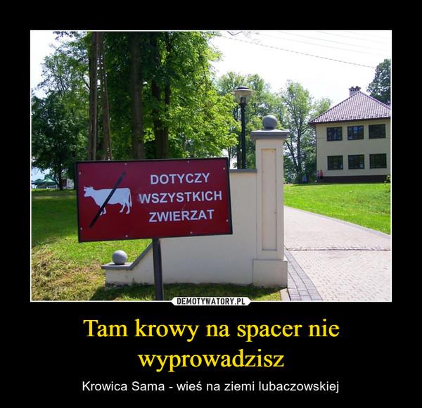 Tam krowy na spacer nie wyprowadzisz – Krowica Sama - wieś na ziemi lubaczowskiej