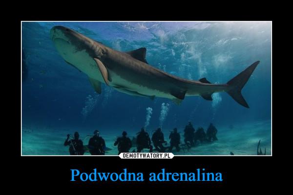 Podwodna adrenalina –