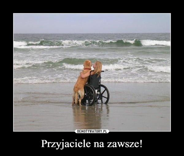Przyjaciele na zawsze! –
