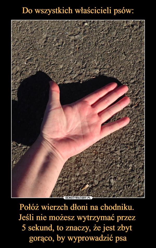 Połóż wierzch dłoni na chodniku. Jeśli nie możesz wytrzymać przez 5 sekund, to znaczy, że jest zbyt gorąco, by wyprowadzić psa –