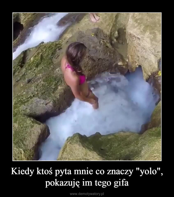 """Kiedy ktoś pyta mnie co znaczy """"yolo"""", pokazuję im tego gifa –"""
