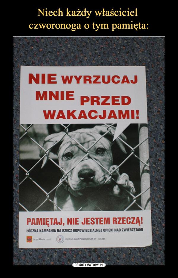 –  Nie wyrzucaj mnie przed wakacjami! Pamiętaj, nie jestem rzeczą! Łódzka kampania na rzecz odpowiedzialnej opieki nad zwierzętami