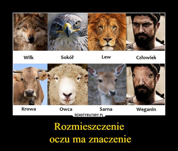 Rozmieszczenie oczu ma znaczenie –  wilk sokół lew człowiek krowa owca sarna weganin