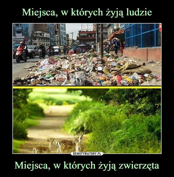 Miejsca, w których żyją zwierzęta –