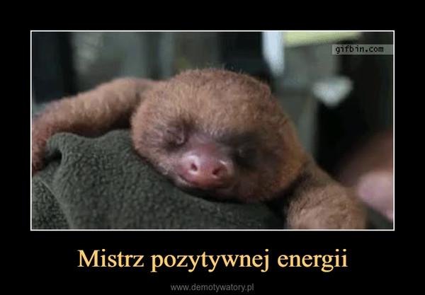 Mistrz pozytywnej energii –