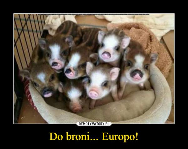 Do broni... Europo! –